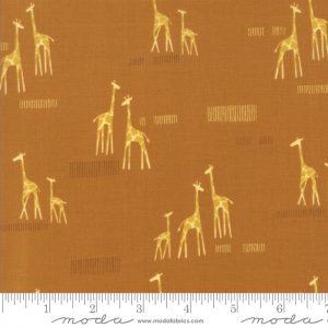 Giraffe on Amber 20647 17