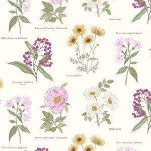 Botanic flowers on cream A453.1