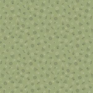 Garden seeds on green A454.3